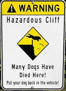 Viele Hunde straben hier