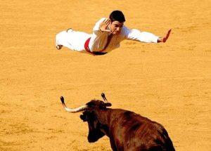 Torero hechtet über Stier