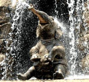Duschen: Lachender Elefant geniesst den Wasserfall