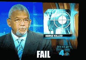 Im TV: Reh oder Pferd
