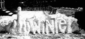 Stinkefinger im Schnee