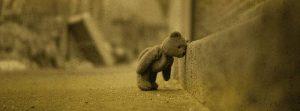 Teddybär mit Kopf an Bordsteinkante