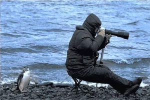 Fotograf - Auf der Such nach dem Motiv!