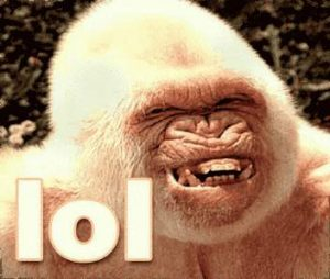 Affe grinst - LOL