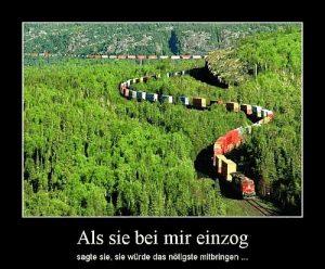 Langer Zug mit vielen Waggons