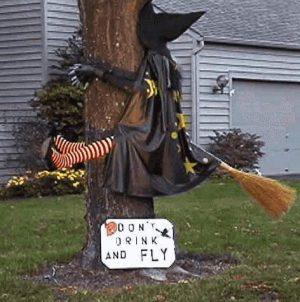 Zuviel Alkohol - Hexe fliegt gegen Baum
