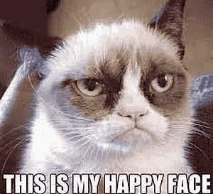 Dies ist mein glückliches Gesicht - Katze