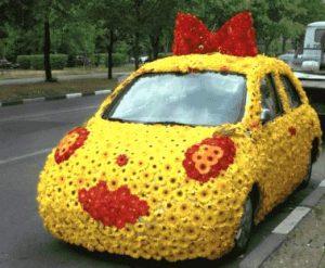 Auto mit Margeriten
