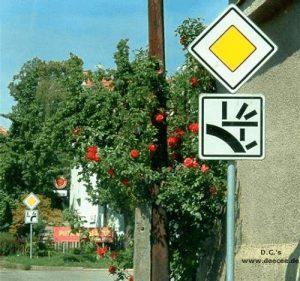 rechts, links oder geradeaus?
