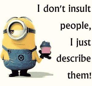Ich beleidige keinen, ich beschreibe nur.