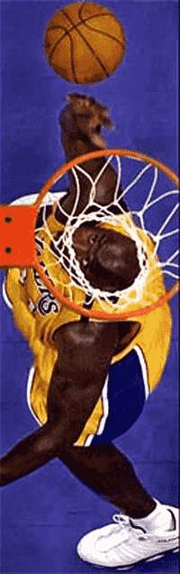 Basketball Korb - Lustige Sport Bilder