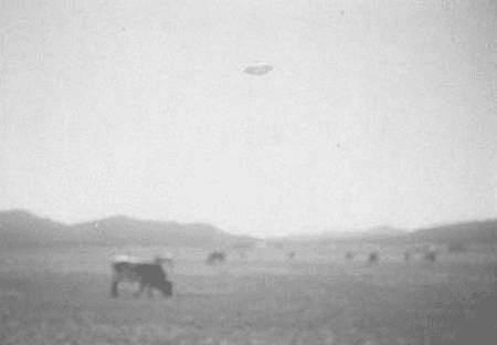 UFO - Weide