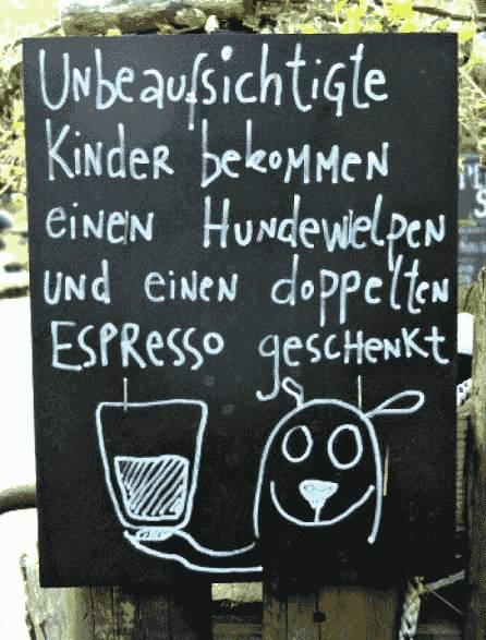 Aufsicht - Hundewelpen und Espresso geschenkt