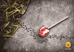 Selbst Ameisen merken, das der Lutscher keinen Zucker enthält